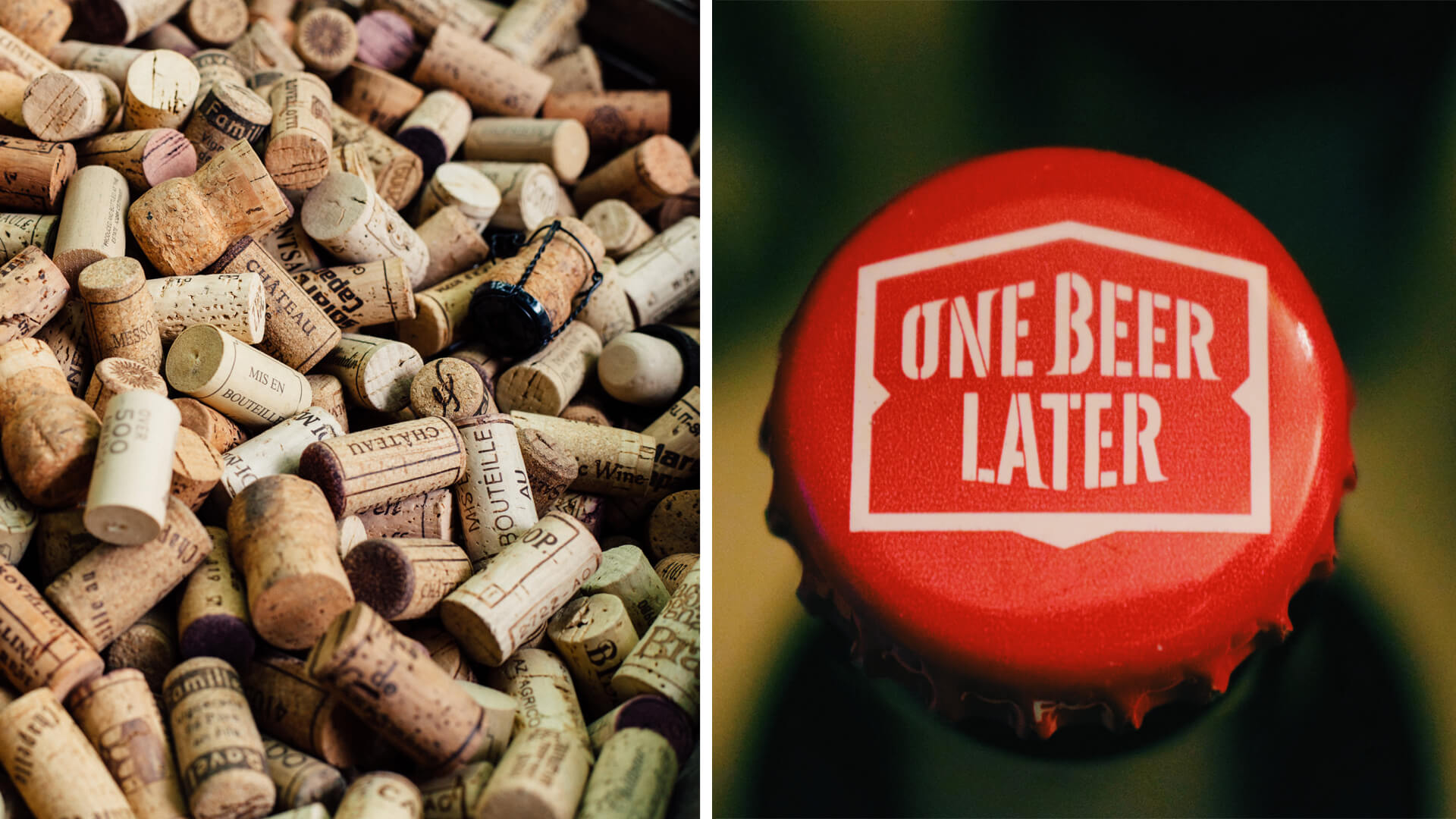 similitudes entre la bière et le vin, accords avec des plats